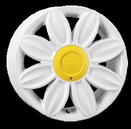Tansy - Daisy (White)